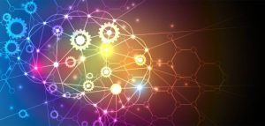 Transformação de dentro para fora aumenta competitividade